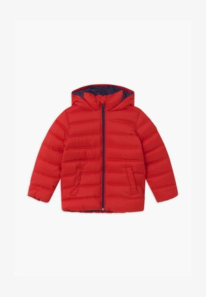 BASIC BOY - Winter jacket - red