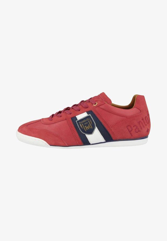 IMOLA - Matalavartiset tennarit - racing red