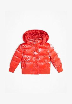 Winter jacket - necessary red