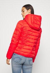 Tommy Jeans - Light jacket - deep crimson - 2