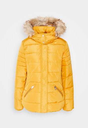 JACKET - Winter jacket - brass yellow
