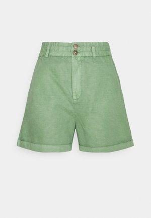 PAPERBAG - Shorts - green dollar