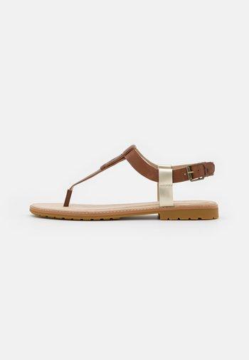 CHICAGO THONG - T-bar sandals - rust