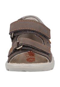 Pepino - Walking sandals - grey - 6