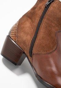 Maripé - Cowboy/biker ankle boot - triumph cigar - 2