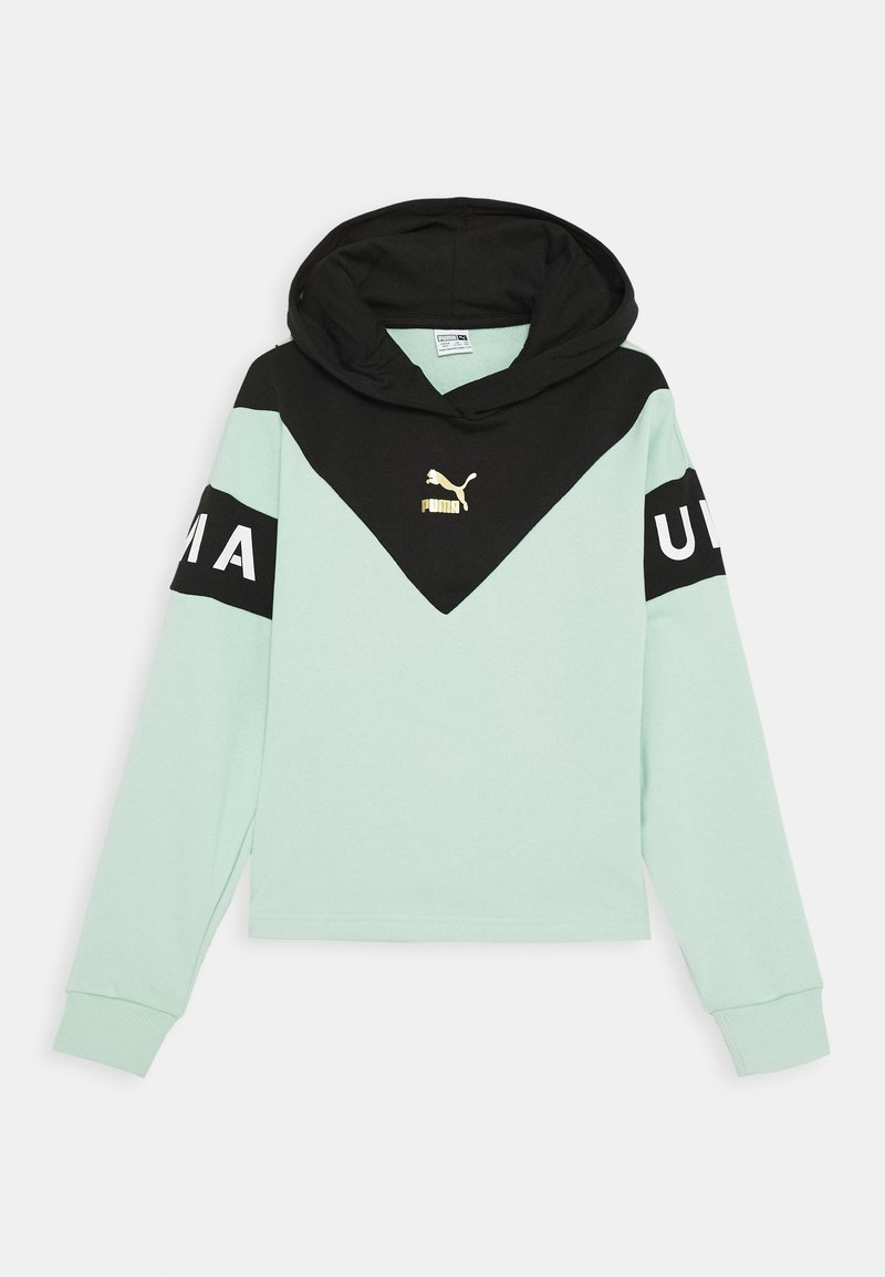 Puma - COLOR BLOCK HOODY - Hoodie - mist green/black