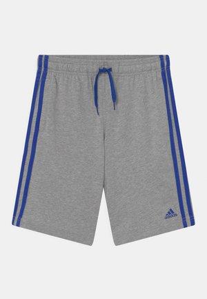 Pantaloncini sportivi - medium grey heather/bold blue