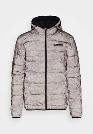 ARBINA REFLECT - Winterjacke - grey/white