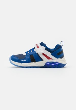 SPAZIALE BOY - Trainers - royal/red