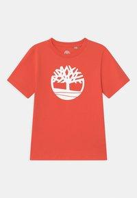 Timberland - SHORT SLEEVES  - Print T-shirt - red - 0