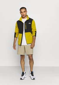 The North Face - PARAMOUNT ACTIVE - Träningsshorts - beige - 1