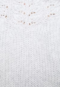 Dorothy Perkins Petite - POINTELLE CABLE  - Jumper - light grey - 4