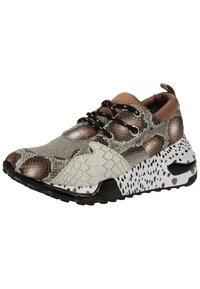 Steve Madden - STEVE MADDEN SNEAKER - Sneakers - brown snake 233 - 3