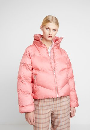 JOYLEE JACKET - Winter jacket - rapture rose