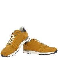 Gaastra - KAI PRS  - Trainers - yellow - 5