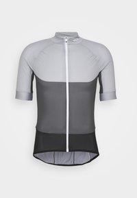alloy grey/sylvanite grey