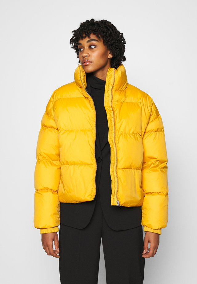 SKYLAR PUFFER JACKET - Winter jacket - gold digger