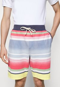 Polo Ralph Lauren - Shorts - french blue/multi - 5