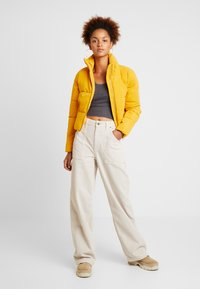 BDG Urban Outfitters - PRINT POINTELLE TANK - Top - dark grey - 1