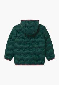 Benetton - HARRY ROCKER - Winterjas - dark green - 1