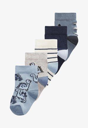 5 PACK DINOSAUR SOCKS - Socks - blue