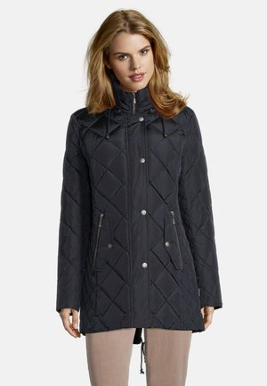 Winter jacket - graphit
