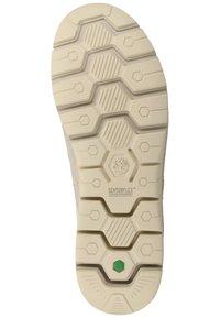 Timberland - TIMBERLAND SNEAKER - Sneaker low - vaporous grey - 3