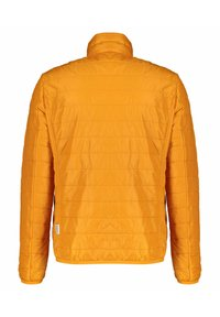 Napapijri - ACALMAR - Winter jacket - orange (33) - 3