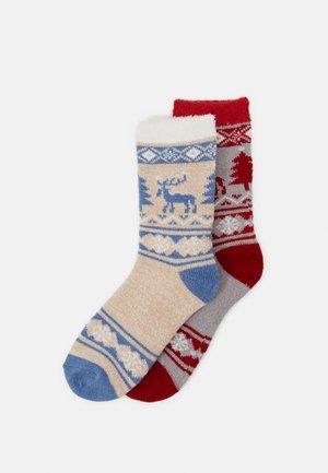 WOMEN COSY WINTER 2 PACK - Socks - light grey melange