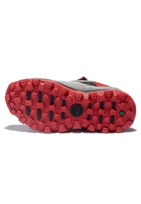 Timberland - TRAIL TREKKER LOW GTX - Sports shoes - grey red - 4