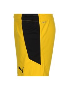 Puma - BORUSSIA - Sports shorts - cyber yellow - 2