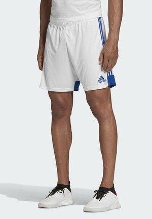 TASTIGO - Shorts - white