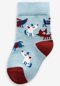 Next - 5 PACK DOG - Ponožky - blue - 3