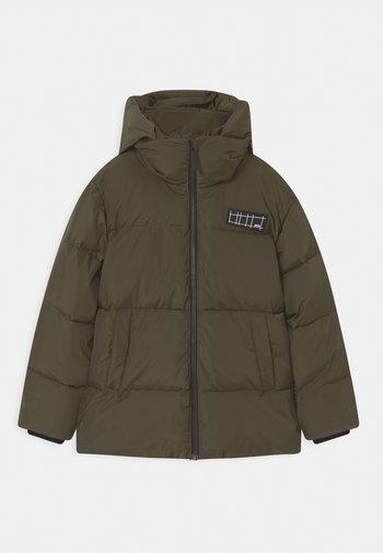 HALO UNISEX - Winter jacket - vegetation