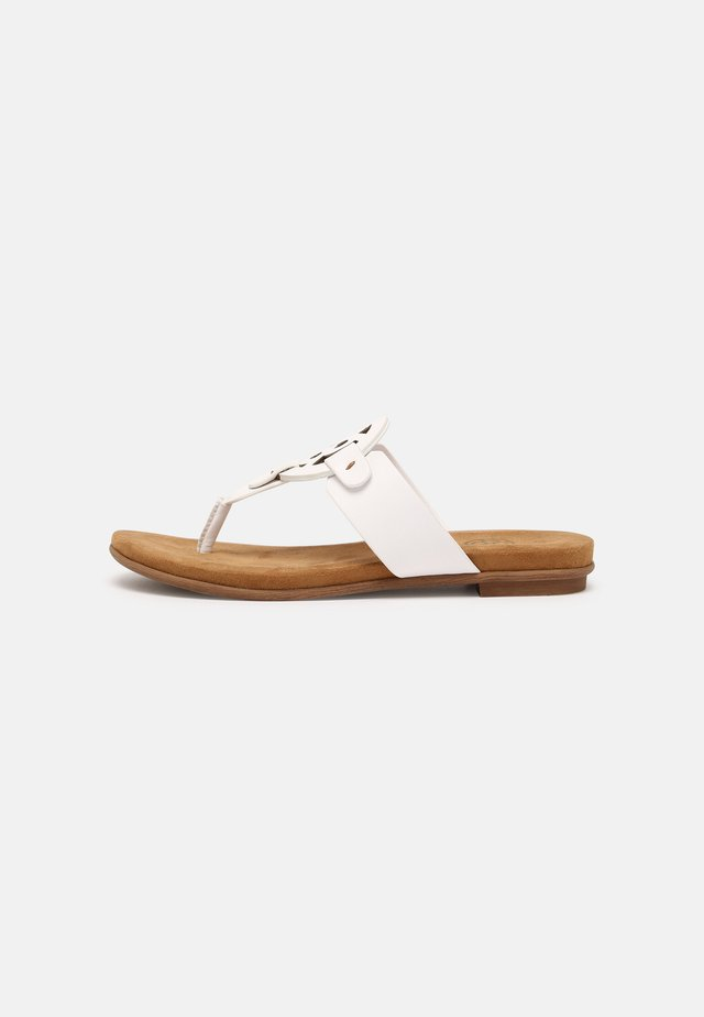 JASMIN - Sandalias de dedo - white