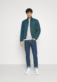 Lacoste - Light jacket - wheelwright/enzian - 1