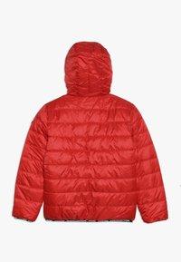 Vingino - TOINE - Winter jacket - classic red - 1