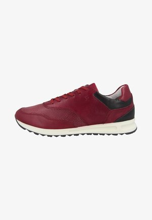 THADDEUS  - Sneakers laag - red