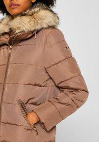 Esprit Collection - MIT 3M® THINSULATE-FÜLLUNG - Winter jacket - brown - 4