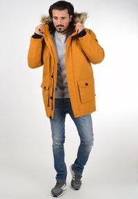 Solid - FRIGO - Winter coat - sudan brown - 1
