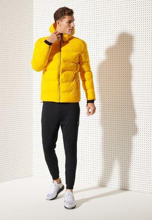 Winter jacket - volt