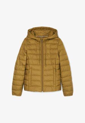 Winter jacket - washed pea