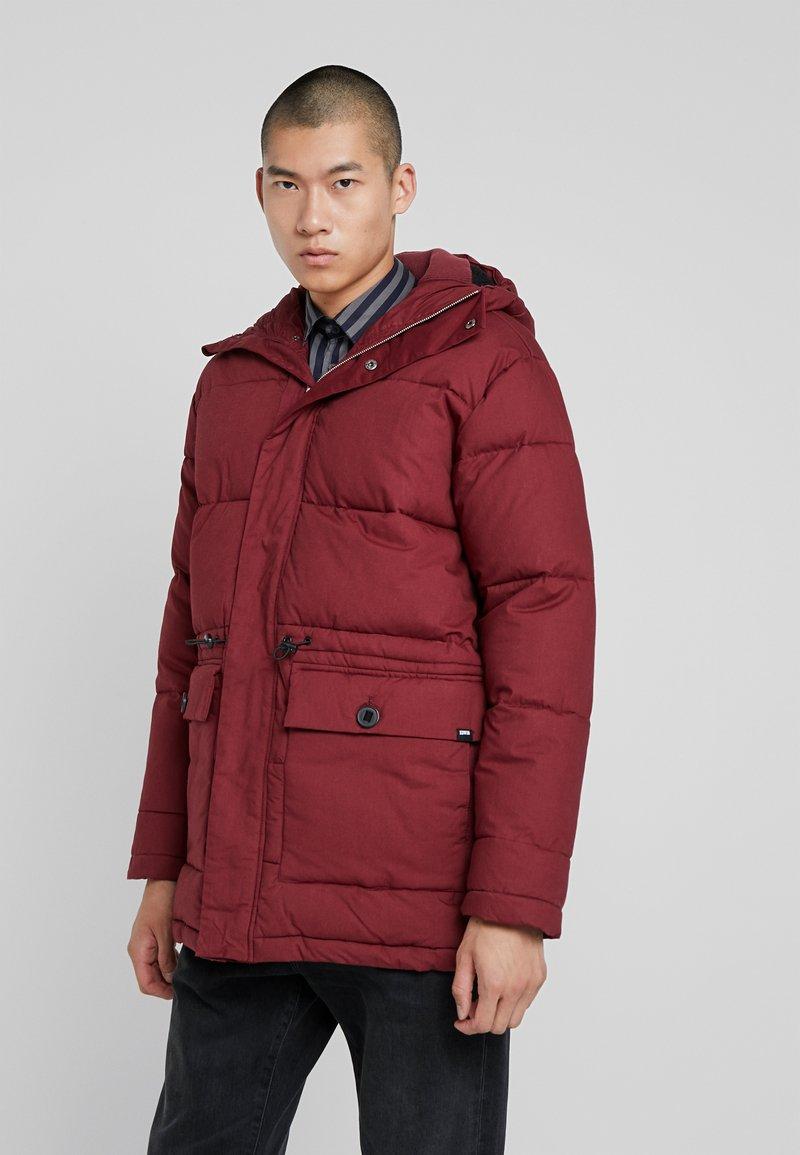 Edwin - Winter coat - ruby wine