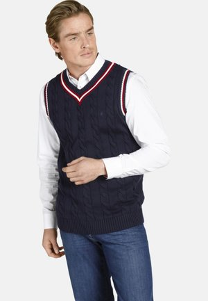 EARL CONSTANTINE - Pullover - dark blue