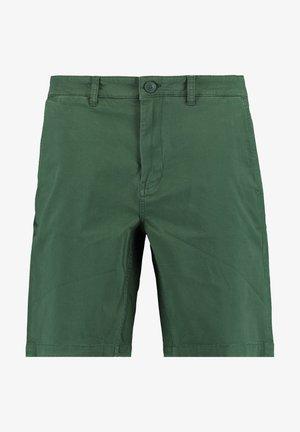 Stefan - Shorts - green