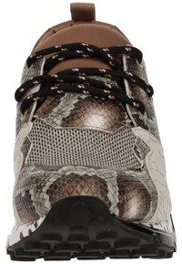 Steve Madden - STEVE MADDEN SNEAKER - Sneakers - brown snake 233 - 5