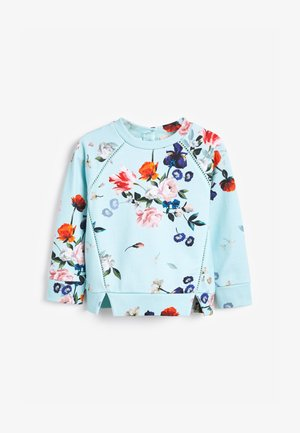 BAKER BY TED - Sweatshirt - mint