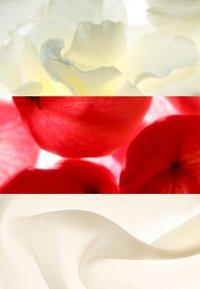 Jil Sander Fragrances - SUNLIGHT EAU DE PARFUM - Perfumy - - - 2