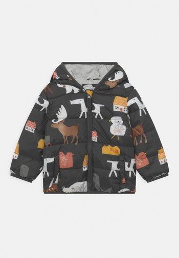 BABY PADDED  - Winter jacket - grey/multi-coloured