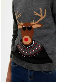 DeFacto - CHRISTMAS - Stickad tröja - grey - 4